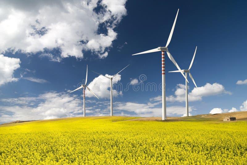 Environnement et énergie de substitution  photographie stock
