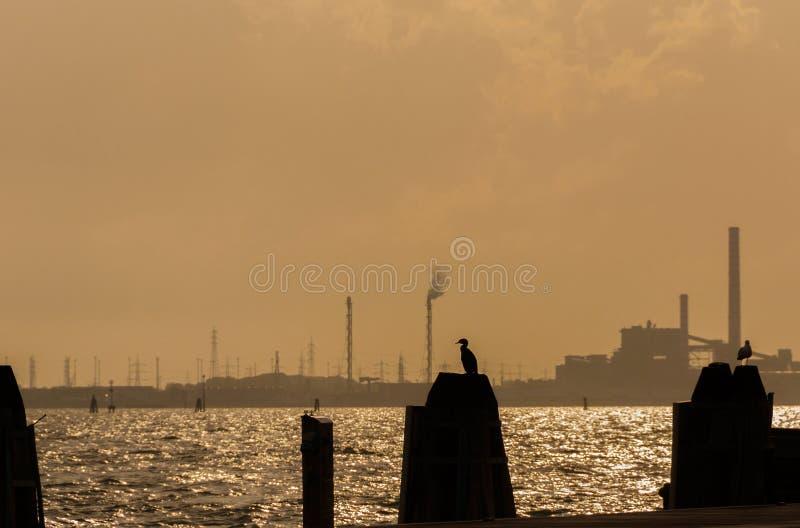 Environnement et pollution à Venise images libres de droits