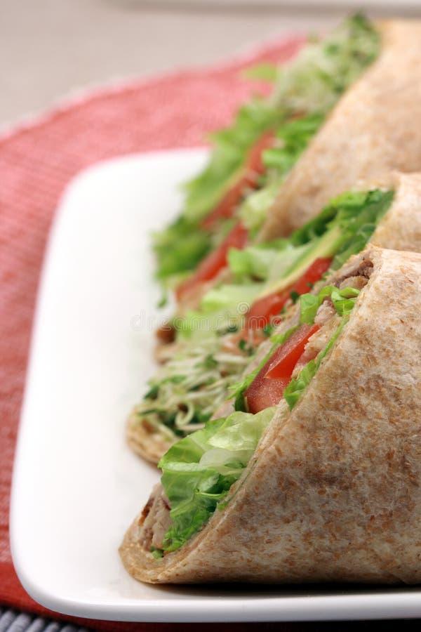 Download Envoltórios Orgânicos Do Sanduíche Foto de Stock - Imagem de jantar, saudável: 10064802