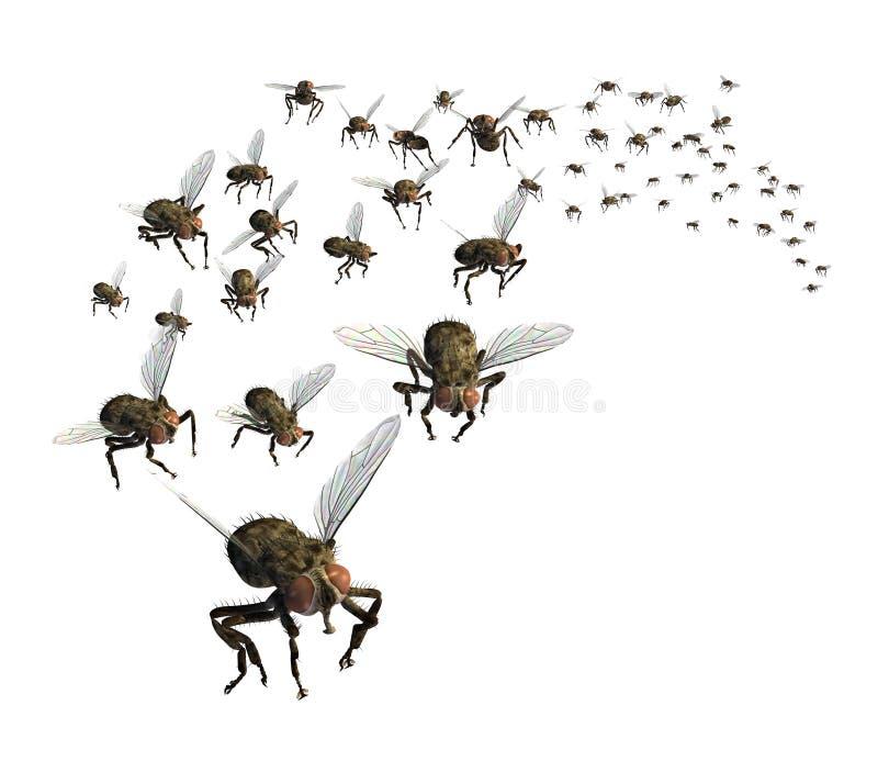 Enxame das moscas ilustração stock