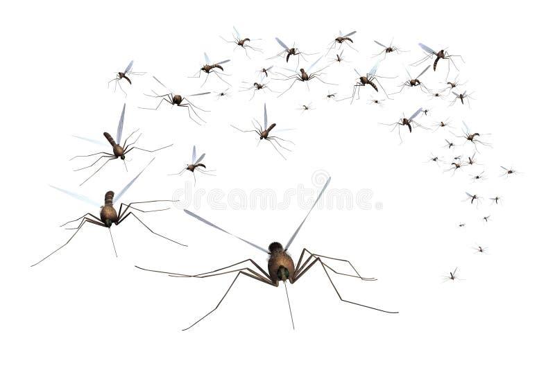 Enxame do mosquito ilustração royalty free