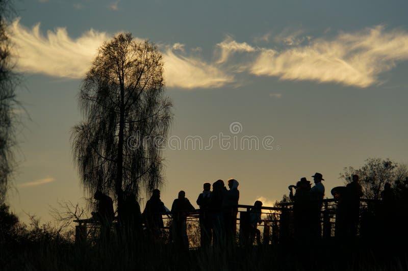 enyoing日出的游人剪影在Uluru,ayers震动,澳大利亚,澳大利亚的红色中心 免版税库存照片