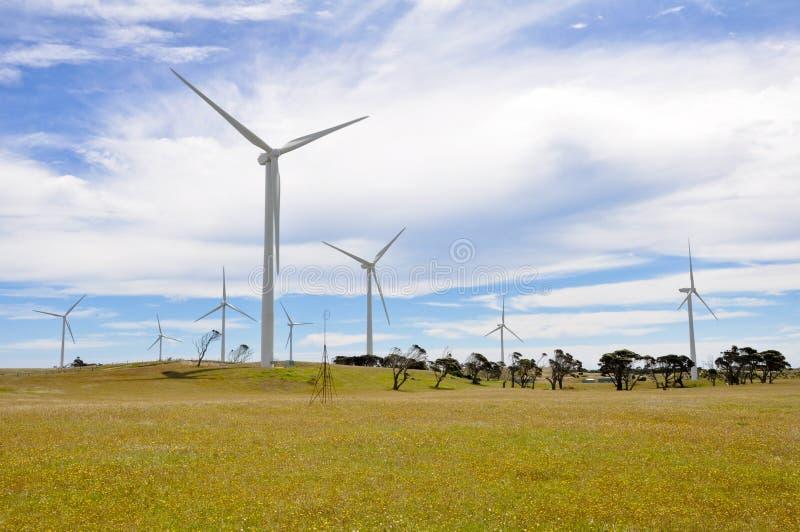 Eolian generator park. In Australia royalty free stock photography