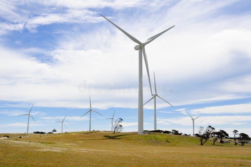 Eolian generator park, Australia. Eolian generator park, south of Australia stock photos