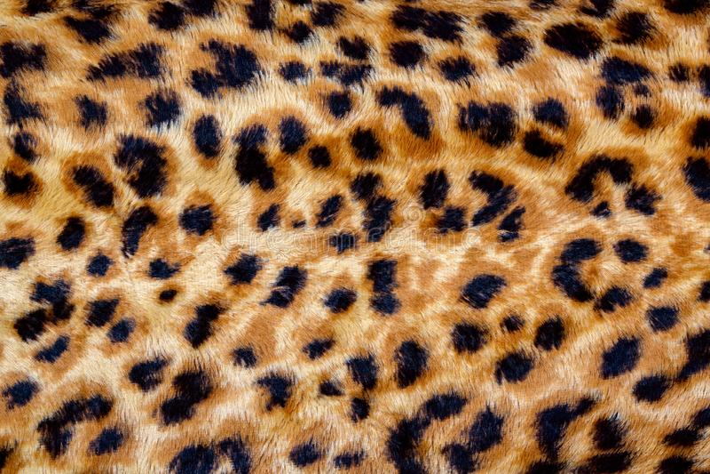 Eopard Seamless Pattern stock photo