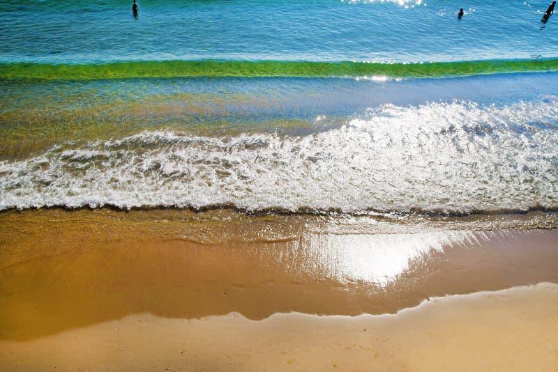 Eople rusza się morze przy kolanową głębią obrazy stock