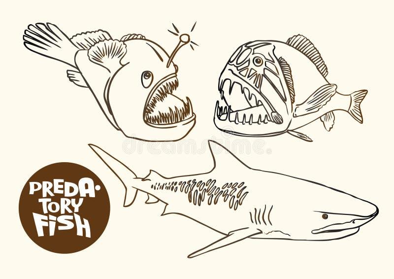 Ep predatório do vetor do esboço do contorno dos peixes das águas profundas ilustração do vetor