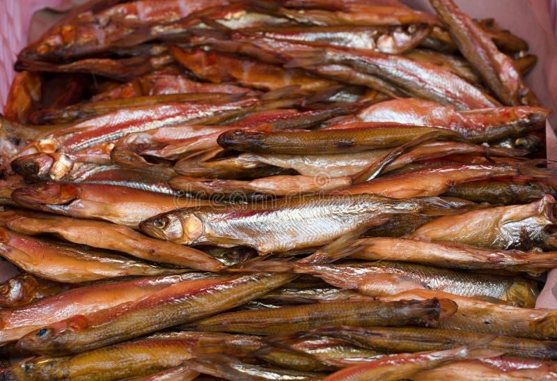 Eperlano ahumado frío de los pescados, industria alimentaria fotos de archivo