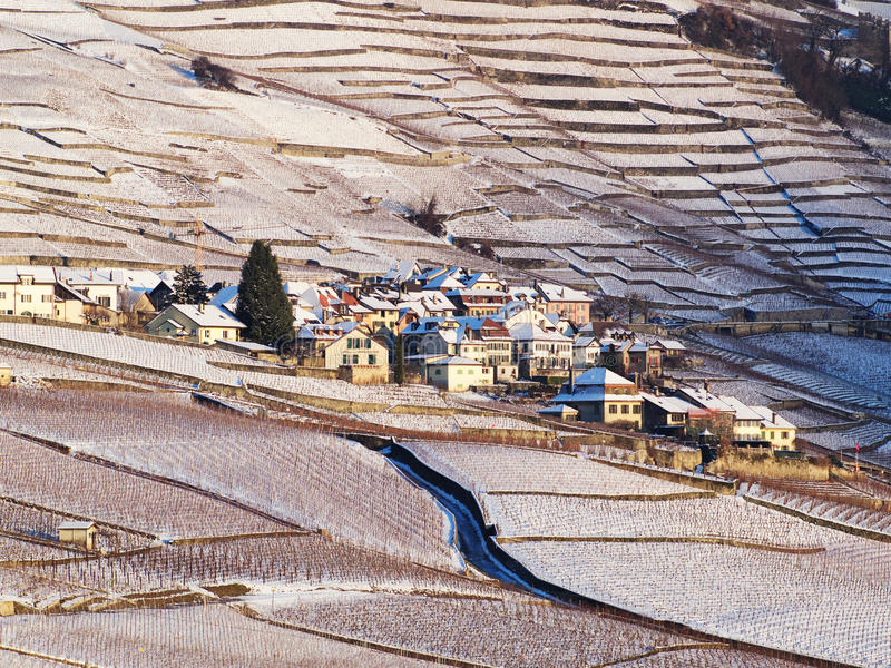 Epesses In Lavaux During Winter With Snow. Village of Epesses in Winter with Snow during Sunset stock photos