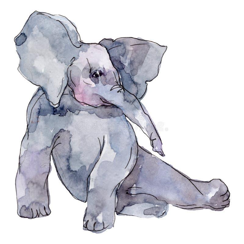 Ephant exotic animal isolado Conjunto de ilustrações de fundo de aquarela Elemento isolado de ilustração do elefante ilustração do vetor