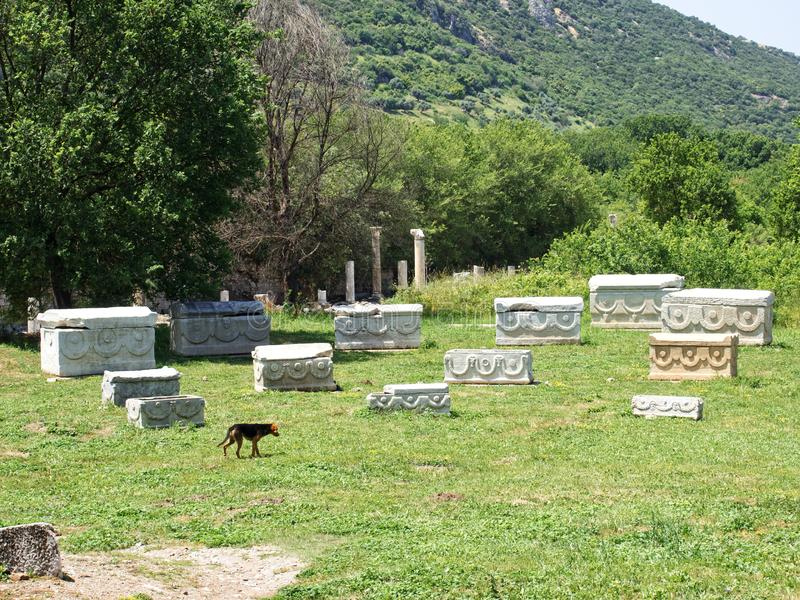 Ephesus foto de stock royalty free