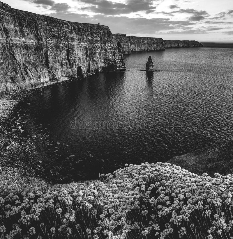 Download epic black and white photograph of the world famous cliffs of mo stock photo