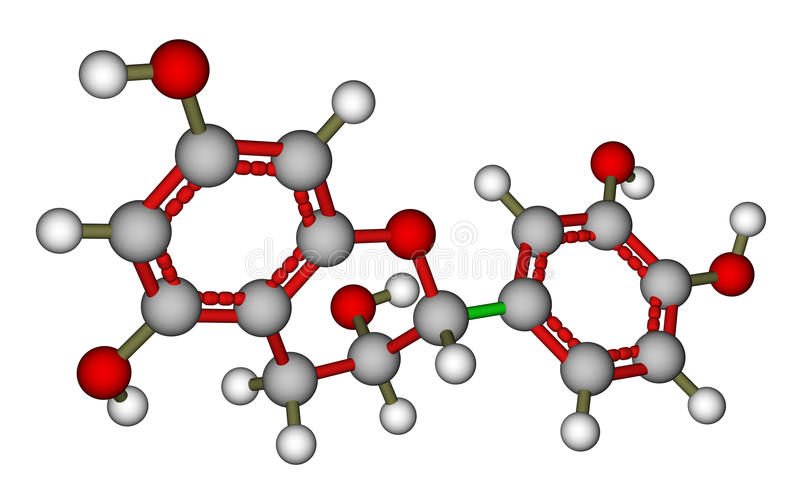 Epicatechin molecular model. Optimized molecular structure of epicatechin, a natural antioxidant found in plants vector illustration