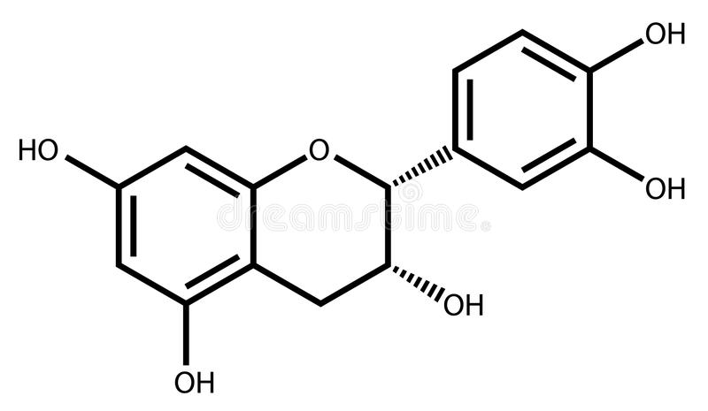 Epicatechin structural formula. Structural formula of epicatechin, a natural antioxidant found in plants royalty free illustration
