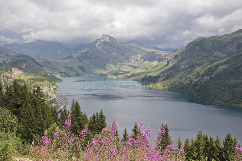 Epilobium angustifolium e Lac de Roselend immagine stock libera da diritti