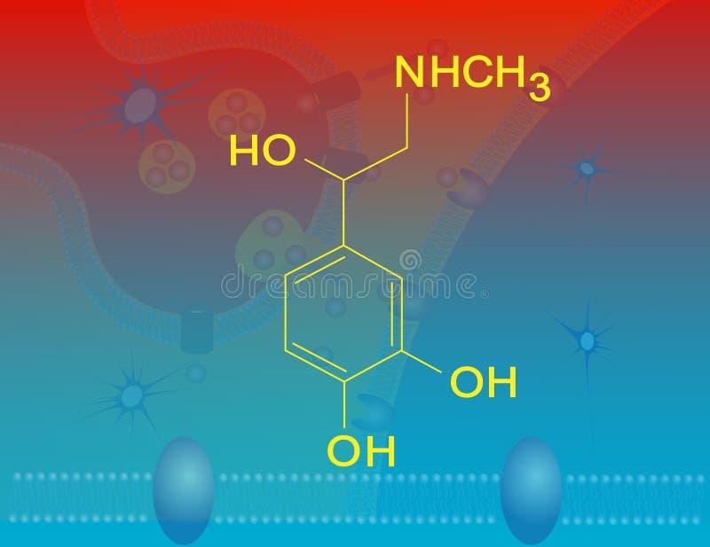 Epinefrine stock illustratie