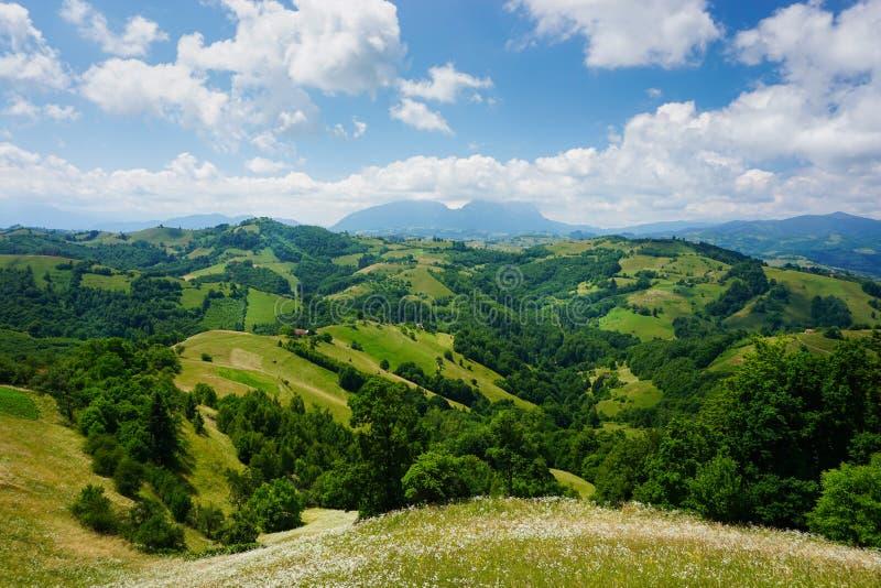 Episch landschap in groene heuvels en bergen van landelijk Transsylvanië, Roemenië stock foto's