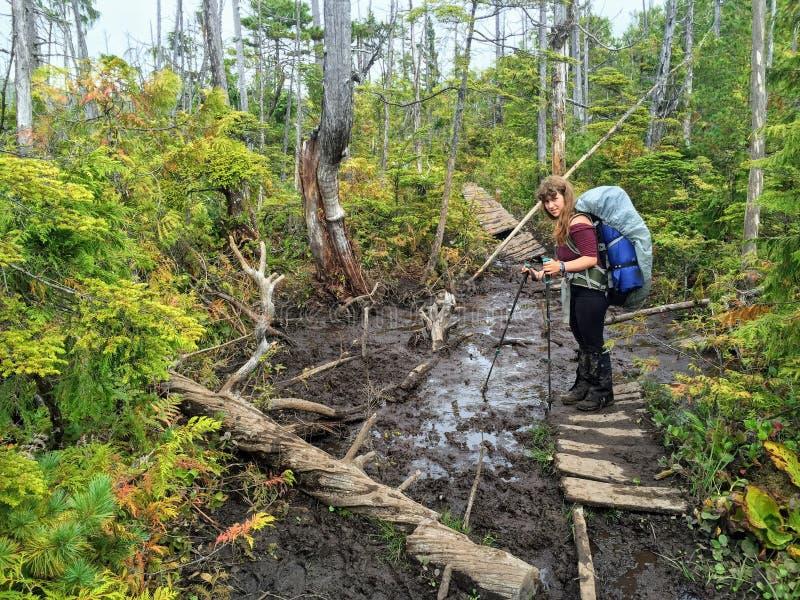 Epische Wanderung entlang der Westküsten-Spur, Vancouver Island, Kanada lizenzfreies stockbild