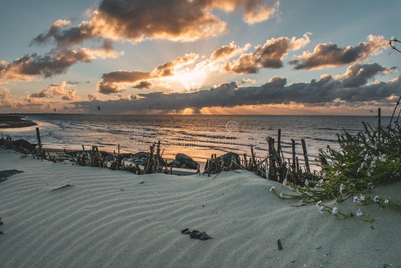 Episk solnedgånghimmelpanorama av Goeree-Overflakkee, Nederländerna, Brouwersdam royaltyfri fotografi