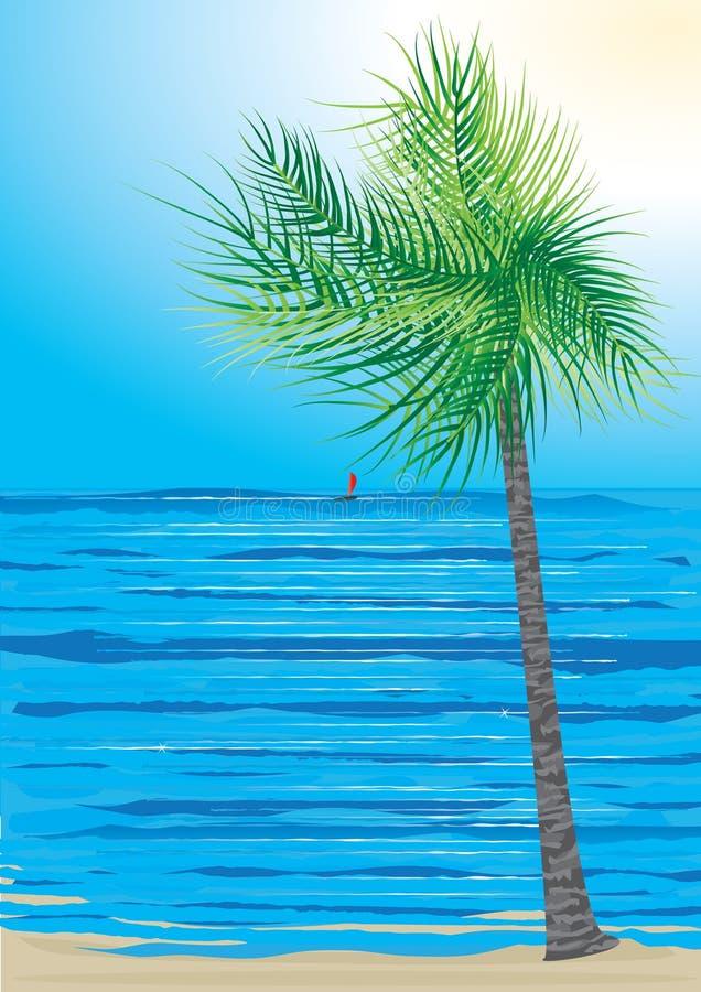 eps καρύδων δέντρο θάλασσας &t απεικόνιση αποθεμάτων