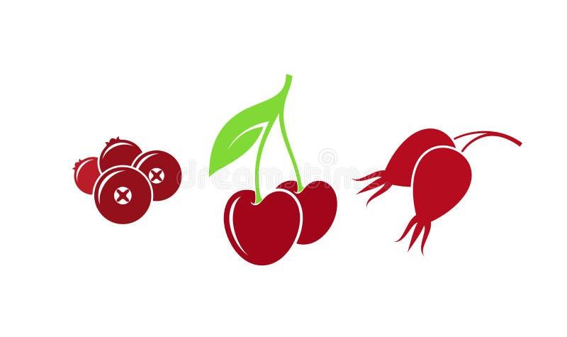 红色莓果 r 在白色背景的被隔绝的果子 皇族释放例证