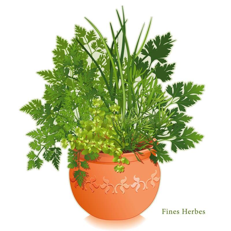 +EPS affine Herbes dans le planteur de terre cuite illustration de vecteur