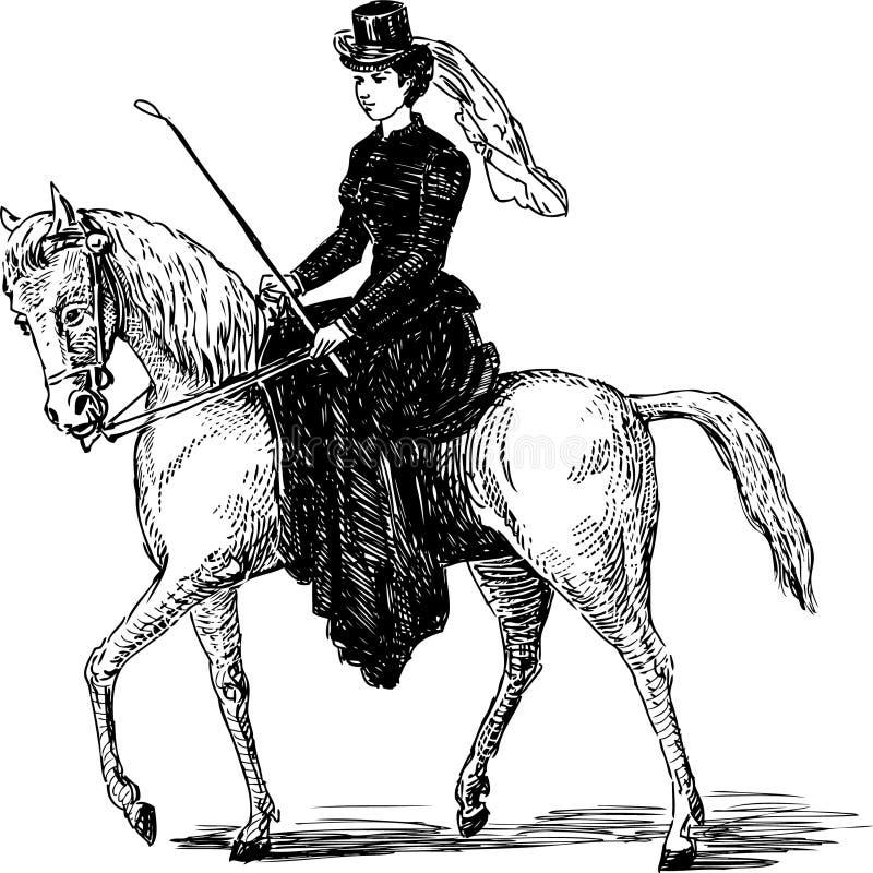Equestre ilustração royalty free