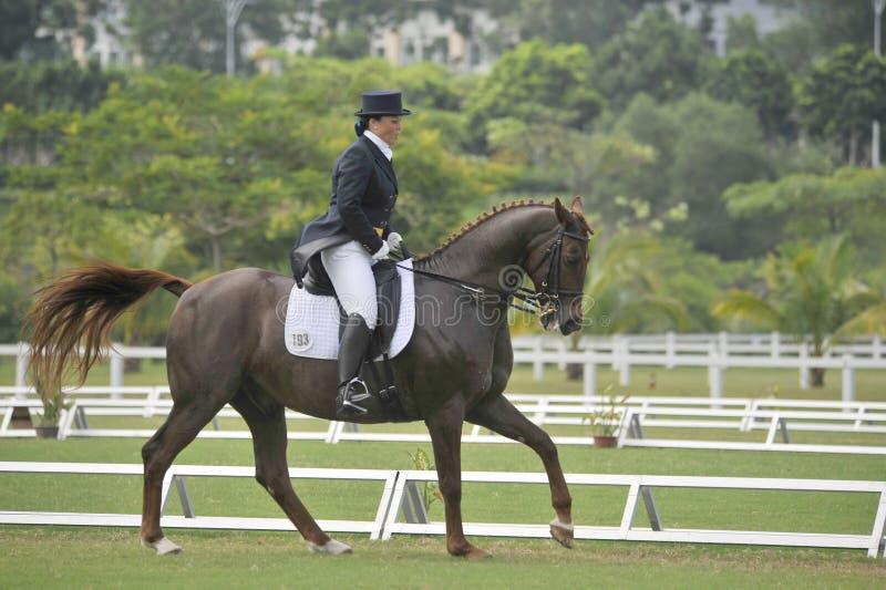 Equestrian di Dressage fotografia stock libera da diritti