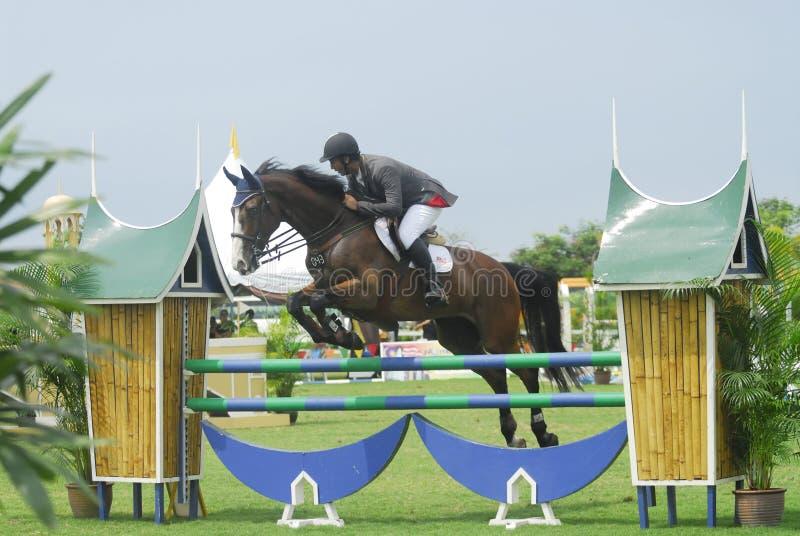 Download Equestrian Doskakiwania Przedstawienie Zdjęcie Stock Editorial - Obraz: 10526598
