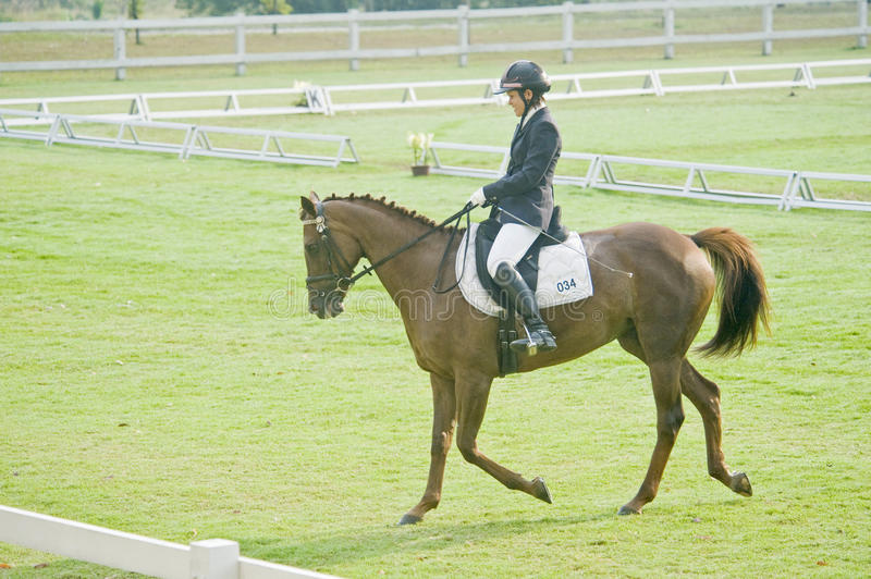 Download Equestrian Dressage editorial photography. Image of dangerous - 10545722