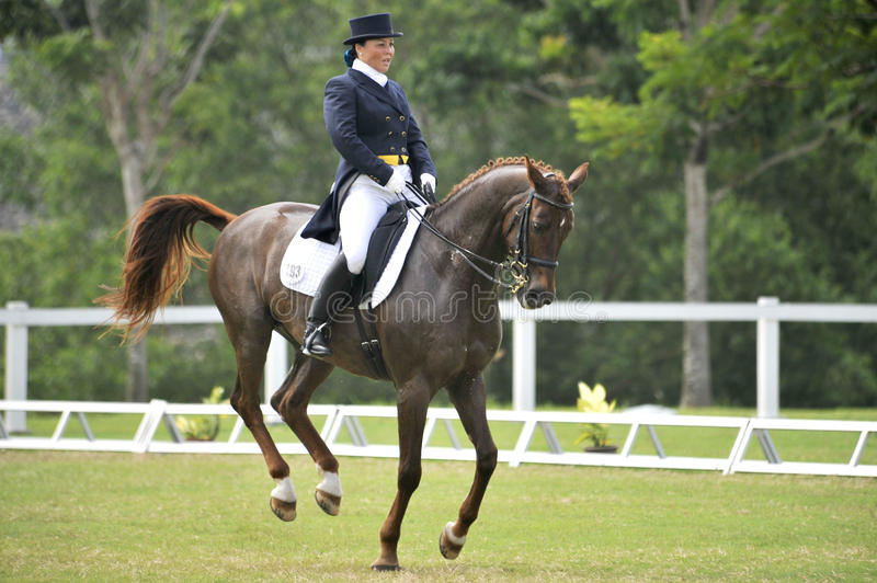 Equestrian Dressage stock photography