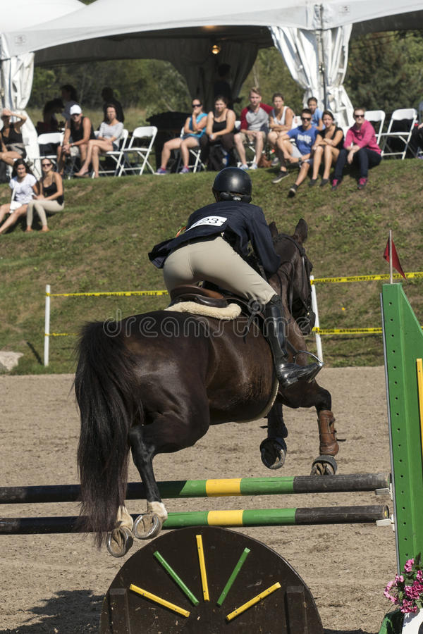 Equestrian event - jumper. Rear side view of horse and rider making a jump during competition at the bromont concours June 12, 2016 stock images