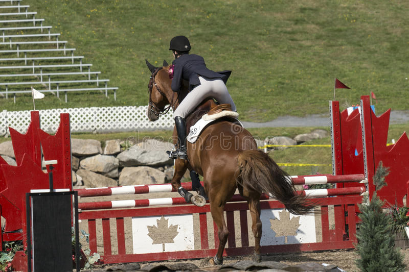 Equestrian event - jumper. Rear view of rider making a jumpg at the bromont concours June 12, 2016 royalty free stock photography