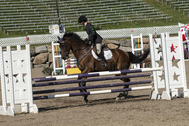 Equestrian event. Picture of rider and brown horse stop at hurdle during competition at the bromont concours June 12, 2016 royalty free stock photography