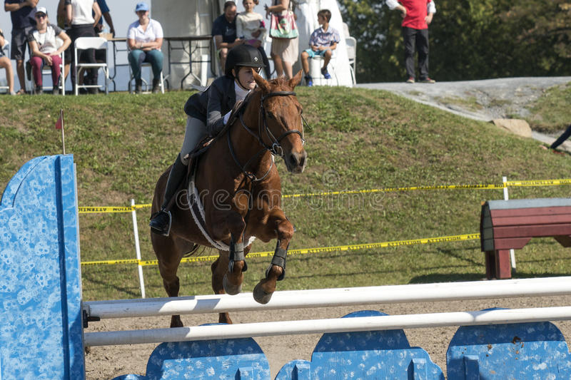 Equestrian. Front view of rider and brown horse making a jump during competition at the bromont concours June 12, 2016 stock images