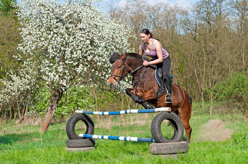 Equestrian - Horse Jumping Stock Photography