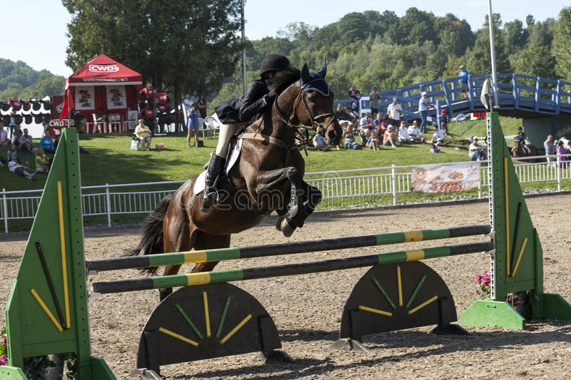 Equestrian - horse jumping. Front side view of young rider and brown horse making a jump during competition at the bromont concours June 12, 2016 stock images