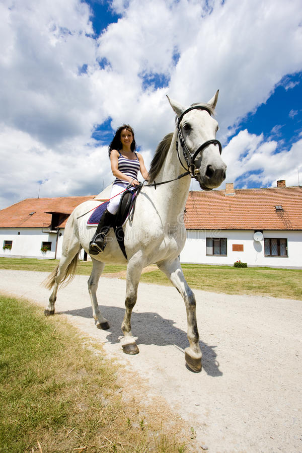 Equestrian on horseback royalty free stock photos