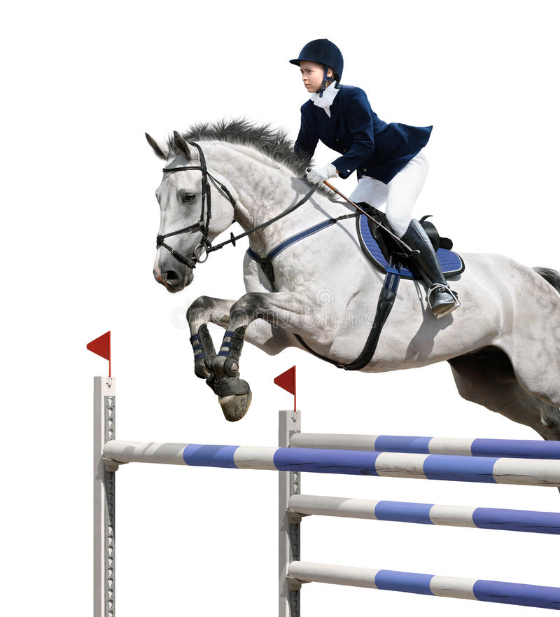 Equestrian jumper royalty free stock photography
