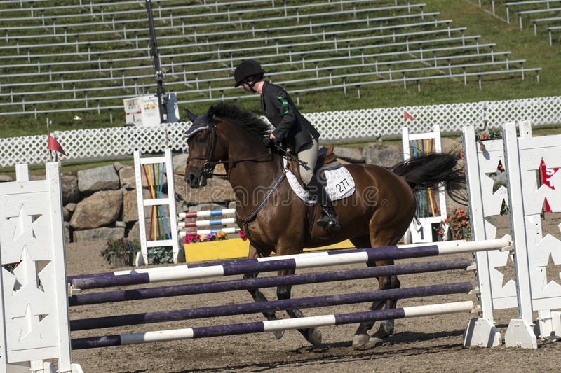 Equestrian. Picture of rider and brown horse stop at hurdle during competition at the bromont concours June 12, 2016 royalty free stock images