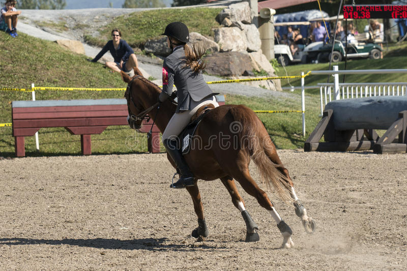 Equestrian. Picture of rider and brown horse in training before competition at the bromont concours June 12, 2016 royalty free stock images