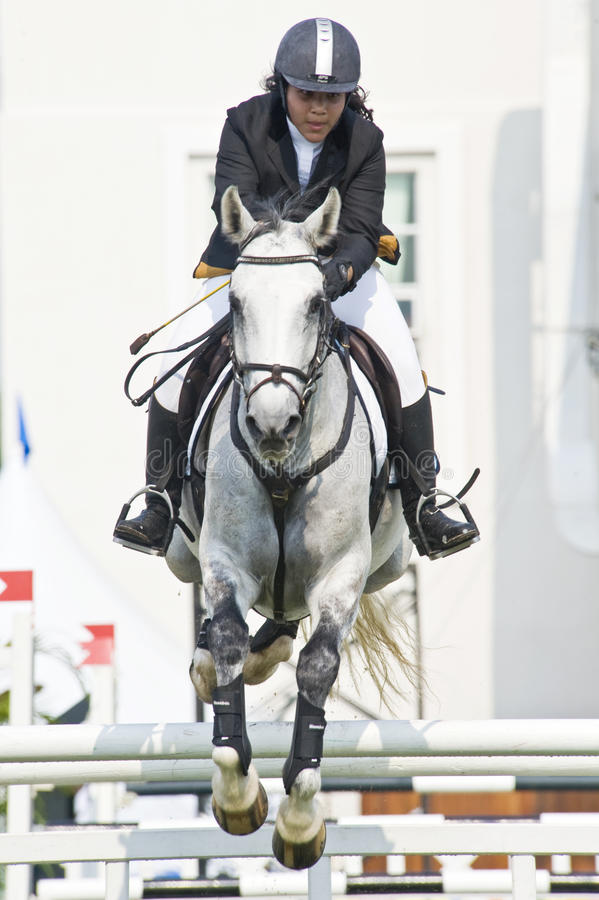 Download Equestrian Show Jumping editorial stock photo. Image of outdoors - 10075738