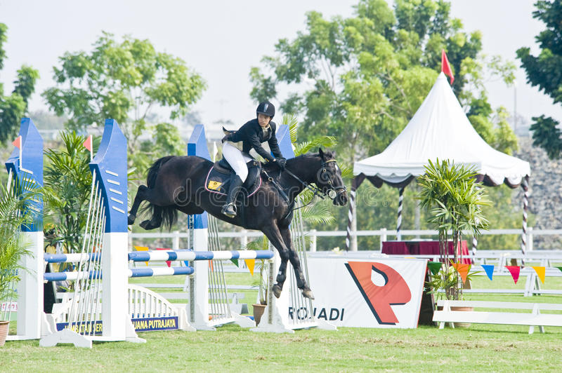 Download Equestrian Show Jumping editorial image. Image of horse - 10075915