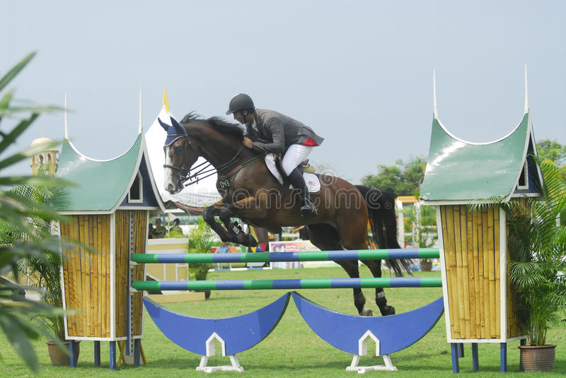 Download Equestrian Show Jumping editorial stock photo. Image of mounted - 10526598