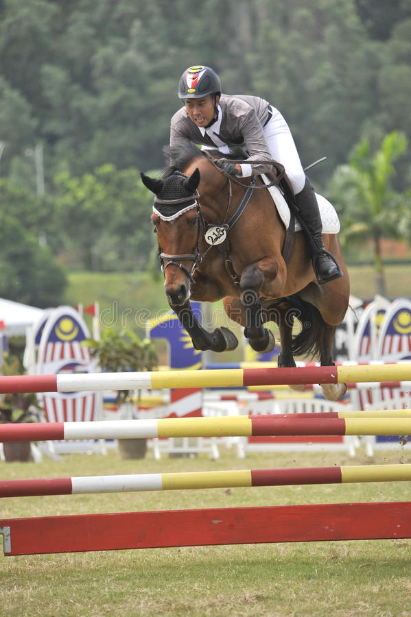 Download Equestrian Show Jumping editorial stock image. Image of male - 14326159