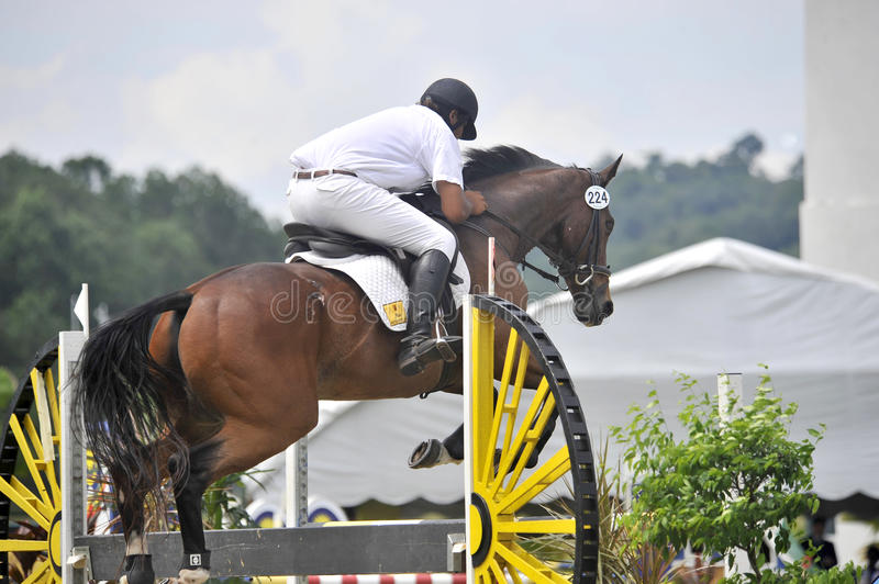 Download Equestrian Show Jumping Editorial Stock Image - Image: 14326289