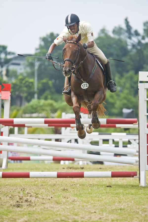 Download Equestrian Show Jumping editorial photography. Image of competition - 14352907