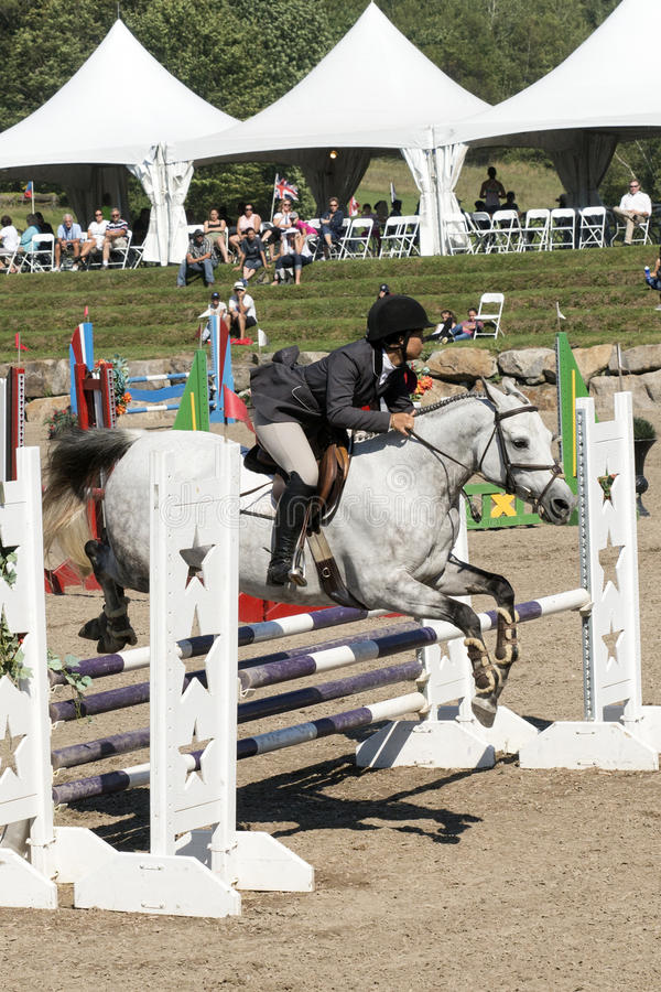 Equestrian show jumping. Picture of rider and white horse making a jump during competition at the bromont concours June 12, 2016 stock image