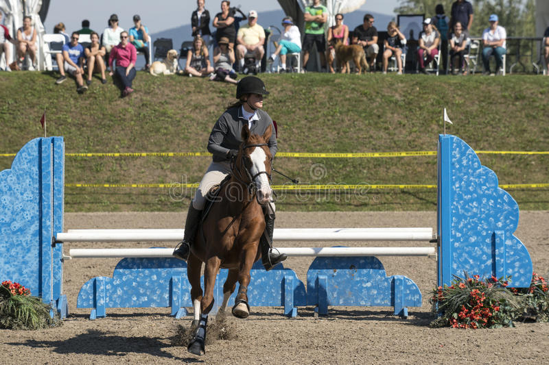 Equestrian show. Picture of rider and brown horse completing a jump during competition at the bromont concours June 12, 2016 stock images
