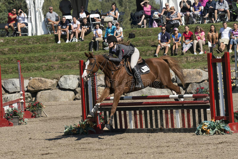 Equestrian show. Picture of rider and brown horse completing a jump during competition at the bromont concours June 12, 2016 stock photography